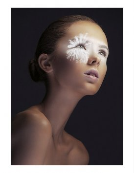 Фотография 1031  категории 'Beauty'