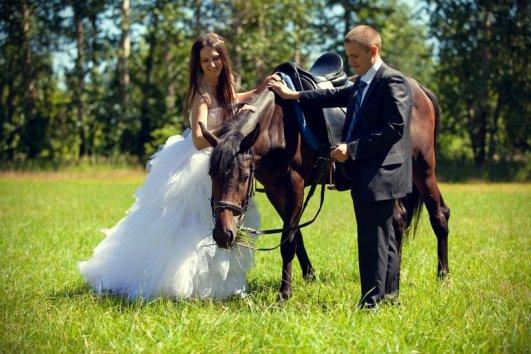 Фотография 7079  категории 'Фотограф на свадьбу'
