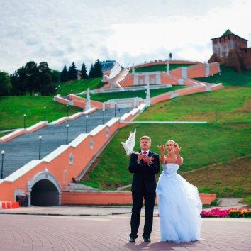 Фотография 7184  категории 'Фотограф на свадьбу'