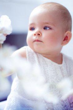 Фотография 6652  категории 'Фотограф для детей'