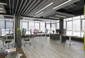 Фотография 9975  категории 'Офис для Интернет компании в Н.Новгороде 150 м²'