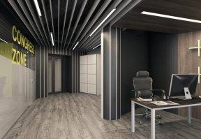 Фотография 9981  категории 'Офис для Интернет компании в Н.Новгороде 150 м²'
