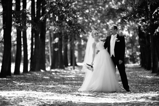 Фотография 7036  категории 'Фотограф на свадьбу'