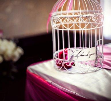 Фотография 7167  категории 'Фотограф на свадьбу'