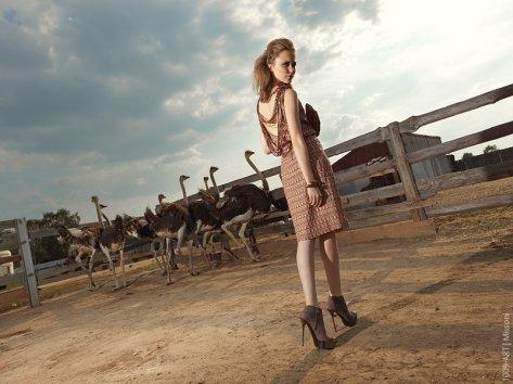 Фотография 5283  категории 'Fashion'